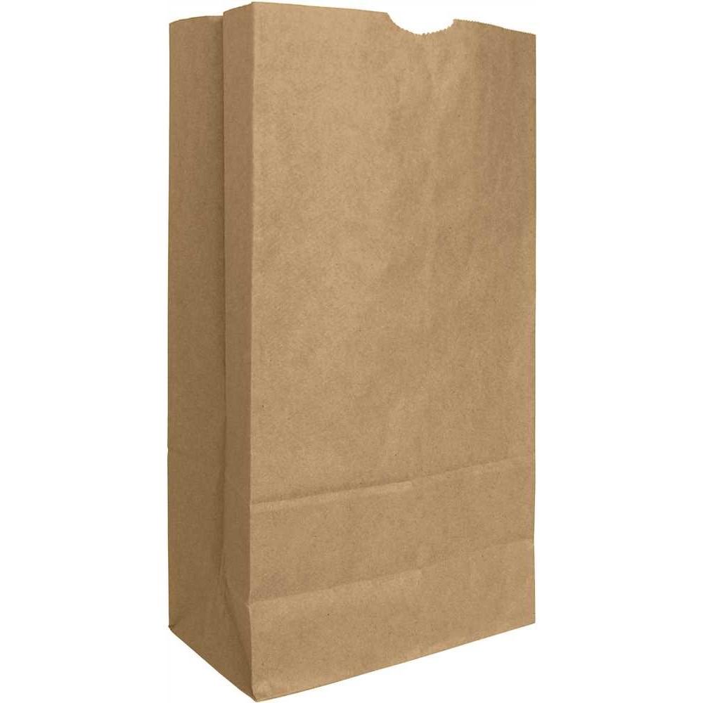 AJM 12# Extra Heavy Paper Bag Bulwark 2/250 ct 60# BW
